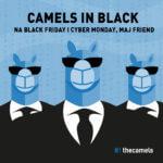 My też szalejemy w Black Friday i Cyber Monday!